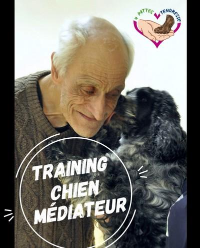 Vidéo-Training «Chien-médiateur» est disponible !