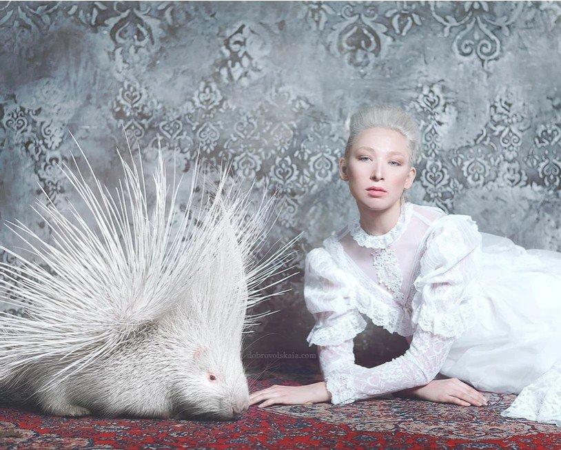 Photo-zoo-thérapie avec Anastasiya Dobrovolskaya