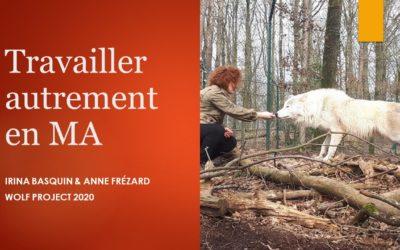 Travailler autrement en Médiation Animale avec 4 Pattes Tendresse et Wolf Project !